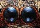Salticidae: Göz Detayı