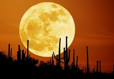 Ay İllüzyonu: Ay Ufukta Neden Daha Büyük Görünür?