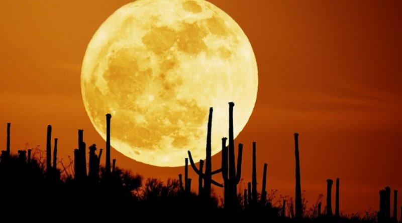 rising_moon_1600-810x506