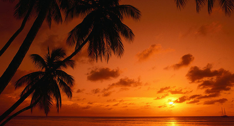 sunset tropical 2