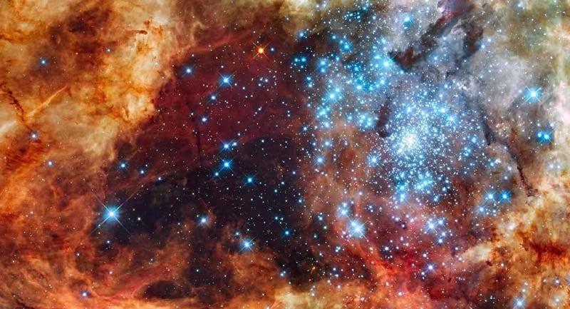stellar formation region cover