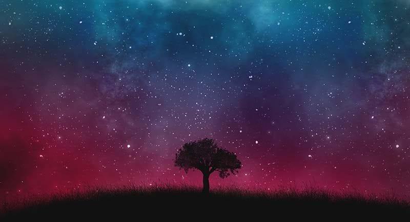 universe tree wallpaper