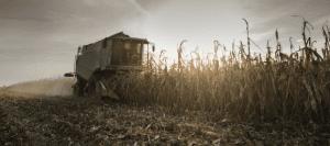 endüstriyel tarım