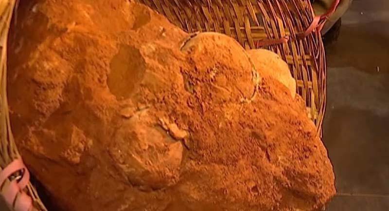 Photo of Çin'de 70 Milyon Yıllık Dinozor Yumurtası Fosilleri Keşfedildi