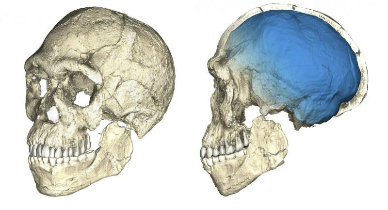 Photo of Fas'ta Dünya'nın En Eski Homo Sapiens Fosilleri Bulundu!