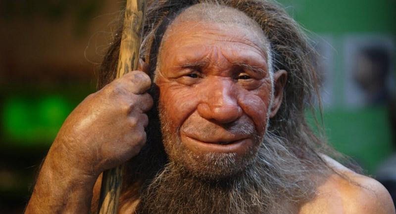 Photo of Neandertaller, Modern İnsanlardan Daha Derin Nefes Almalarını Sağlayan Diyaframlara Sahiplerdi