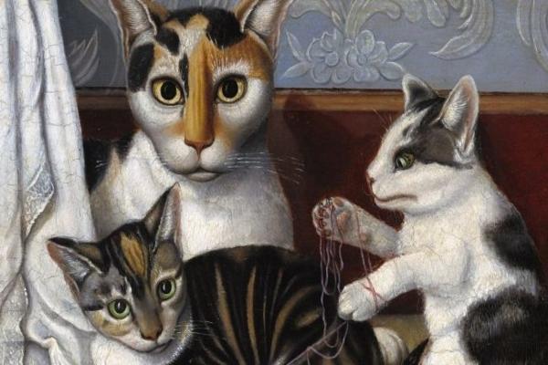 Photo of Kedilerin patileri neden beyazdır?