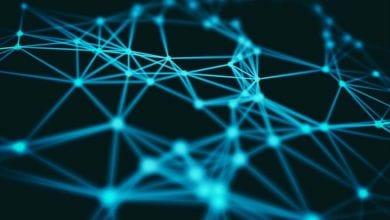 ağ bilimi